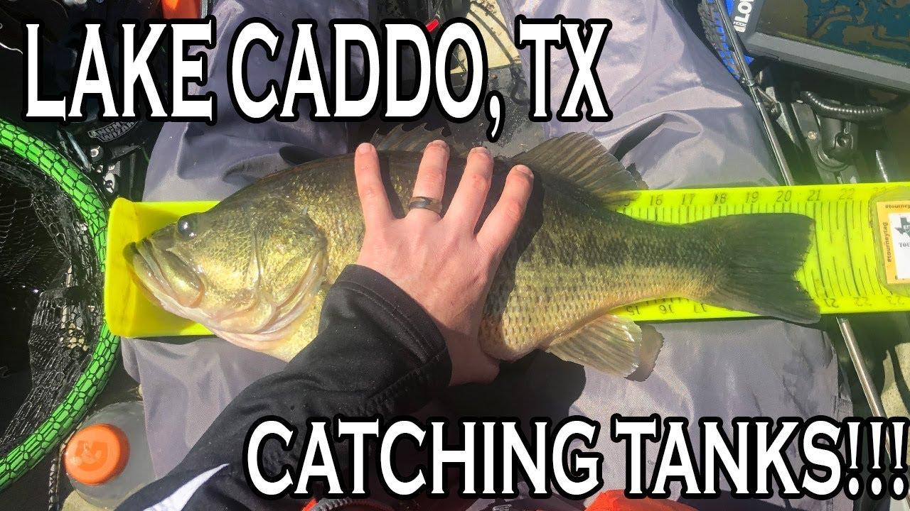 Kayak Bass Fishing Tournament Lake Caddo Tx Etxkf Youtube
