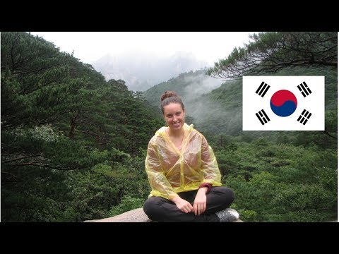 WHAT I LEARNED FROM LIVING IN KOREA | Life as an Expat in South Korea