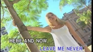 Memory Love Songs Vol.4 - HAWAIIAN WEDDING SONG    (Karaoke)