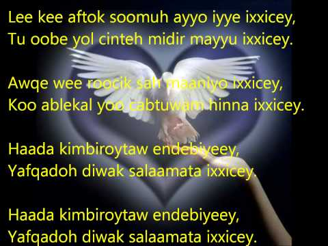 Mohamed Ali Talha: Haada kimbiroytaw (with lyrics)