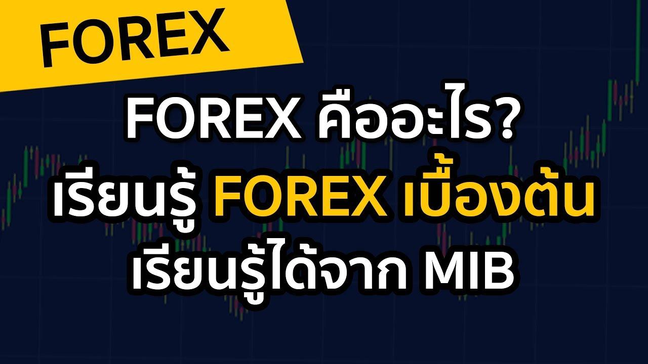 Forex คืออะไร เรียนรู้ Forex เบื้องต้น เรียนรู้ได้จาก Mib
