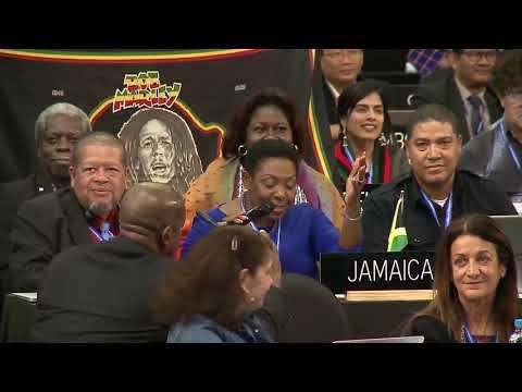 "Inscription of ""Reggae music of Jamaica"" on the Representative List - 2003 Convention (29/11/2018)"