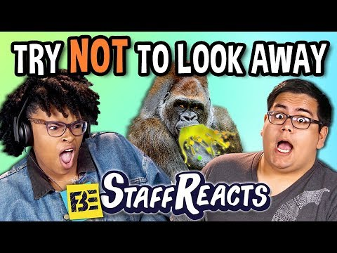 Thumbnail: TRY NOT TO LOOK AWAY CHALLENGE (ft. FBE Staff)