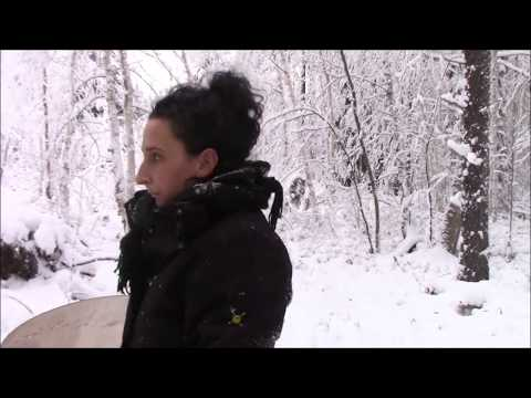 Snowmobiling Here On Our Off Grid Homestead, And Clearing Our Trails