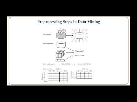 Data Preprocessing (v2)