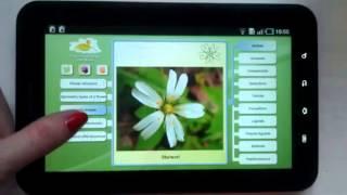 Biology: Plant handbook