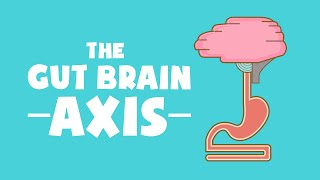 Human Science (Part 1) - The Gut Brain Axis, Microbiome & the power of Probiotics