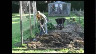 Make A  Backyard Vegetable Patch