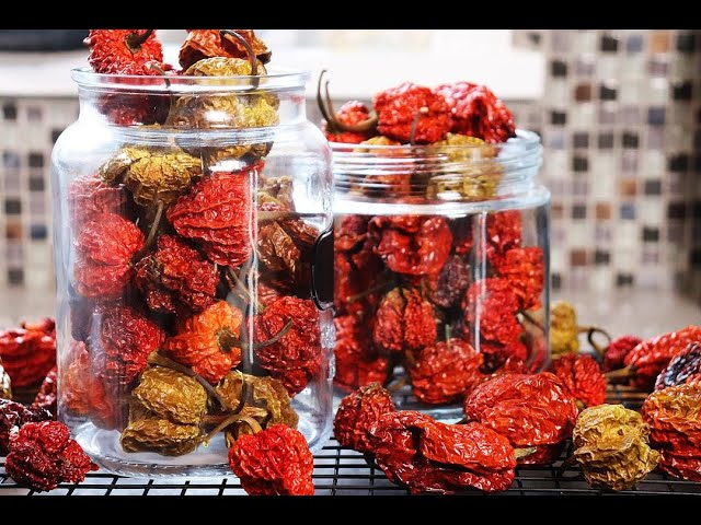 How To Dehydrate Peppers In Your Oven | CaribbeanPot.com