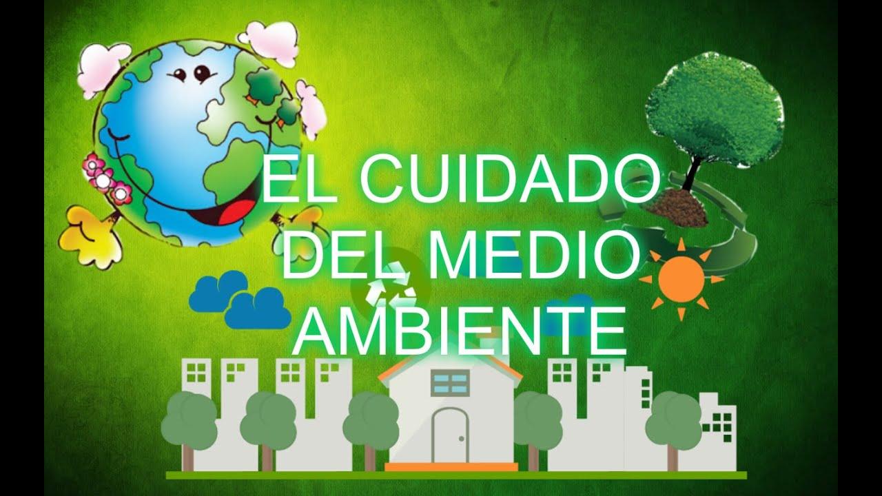 ¿Como Cuidar El Medio Ambiente? Para Niños De Primaria