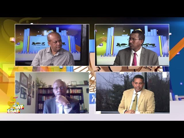 ESAT Awde Economy on EFFORT and political party business Part 1