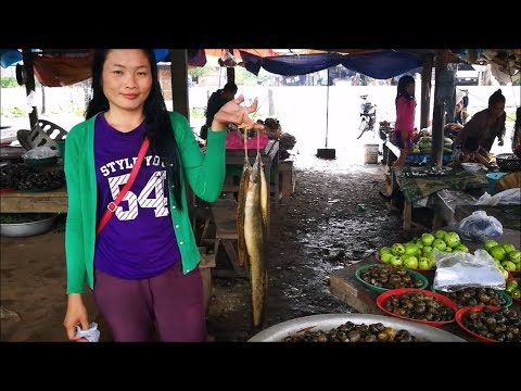 Khok Sawang Laos Market - Laos Food ( Asian Street Food ) , Khammouane Province