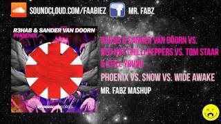 R3hab vs. Red Hot Chilli Peppers vs. Tom Staar - Phoenix vs. Snow vs. Wide Awake(Ummet Ozcan Mashup)