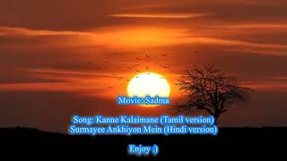 Surmayee Ankhiyon Mein karaoke with lyrics