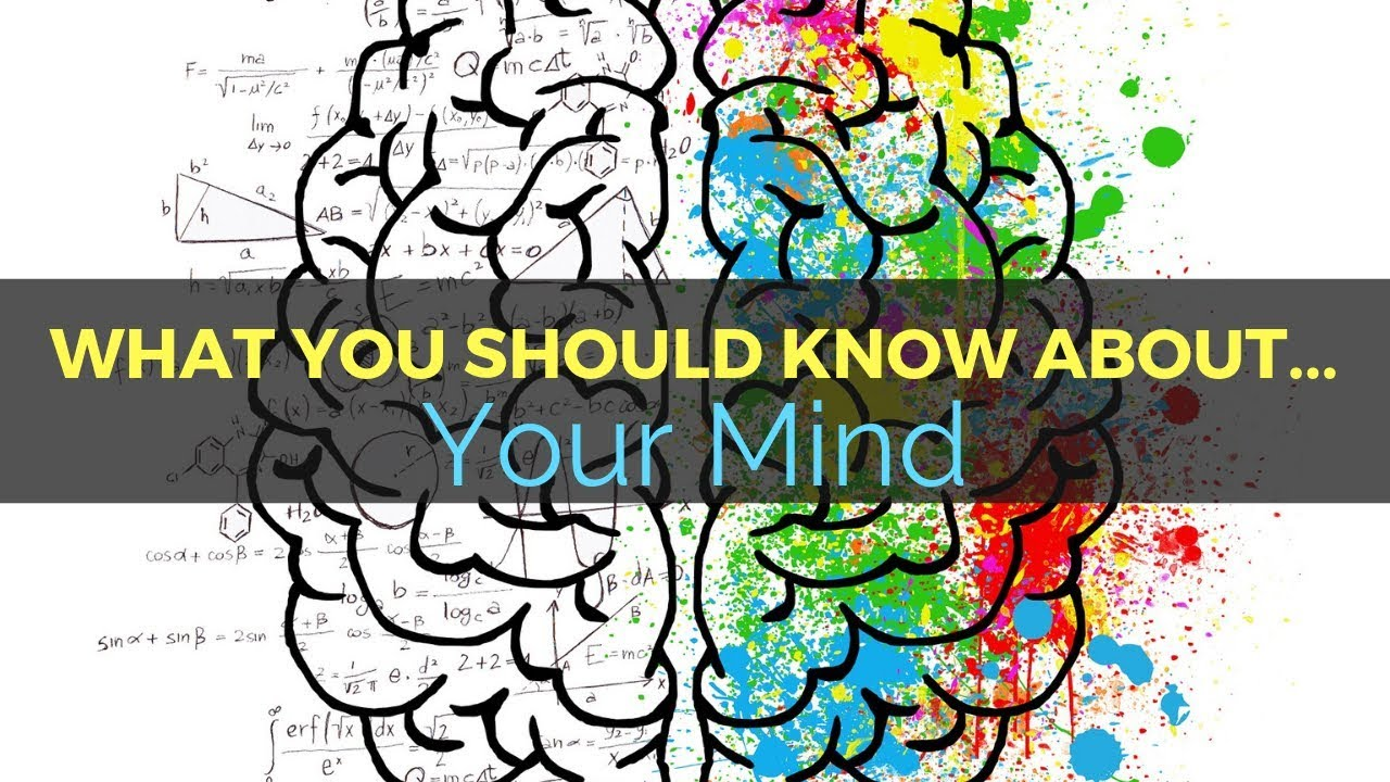36: What You Should Know About... Your Mind 1