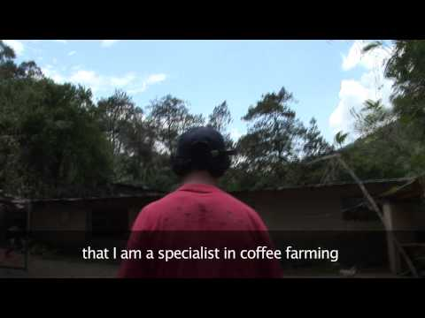 Cafédirect Machu Picchu coffee – organic coffee