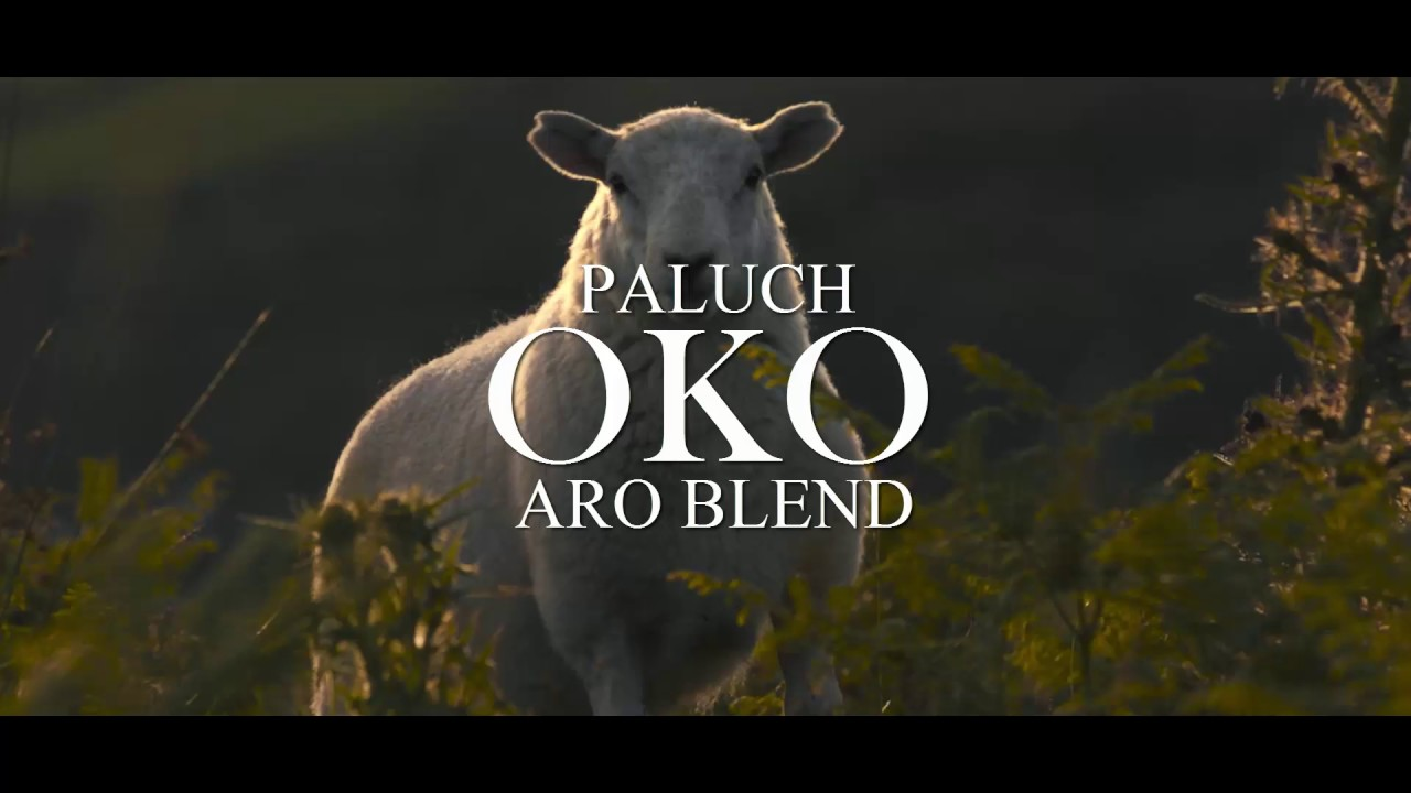Download PALUCH - OKO (ARO BLEND) #OTHER_TAPE