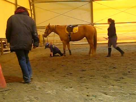 Riding Amber and toppling off after a jump...OOPS!