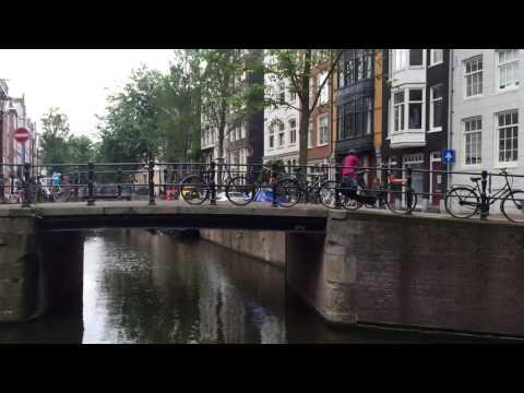 Немного о голландцах