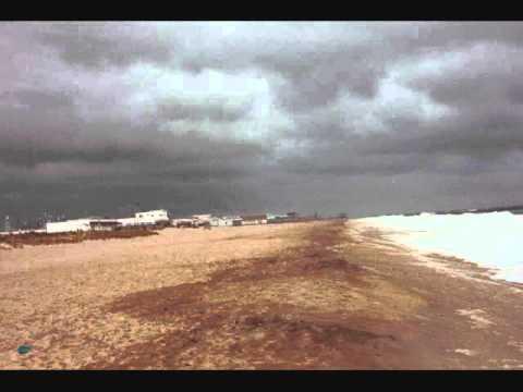 The Mermen - Ocean Beach (studio version)