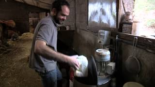 L'Elevage Bovins viande en Limousin