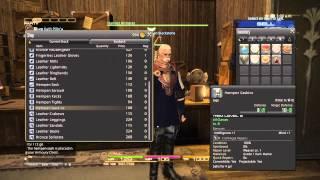 FINAL FANTASY XIV: A Realm Reborn Co-op play