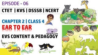 EP- 6 | Ear To Ear | EVS Content and Pedagogy for Class 4 Chapter 2 | CTET KVS DSSSB