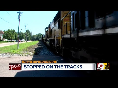 Trains cause traffic blockages, spark safety concerns in Arlington Heights