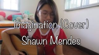 Imagination -Shawn Mendes (acoustic cover)
