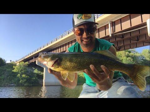 Shore Fishing - Huntsville - Walleye July 26, 2016
