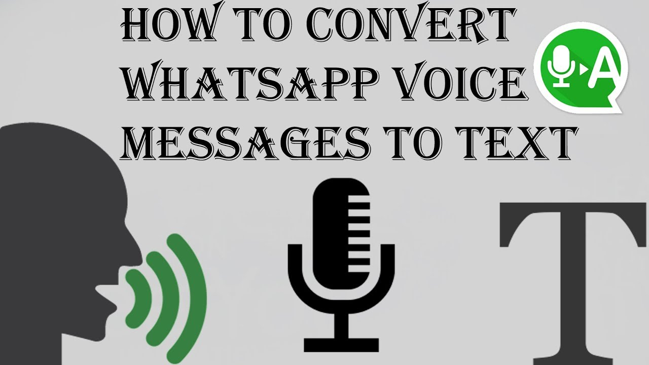 How to Convert WhatsApp Voice Messages to Text (Guide) 1