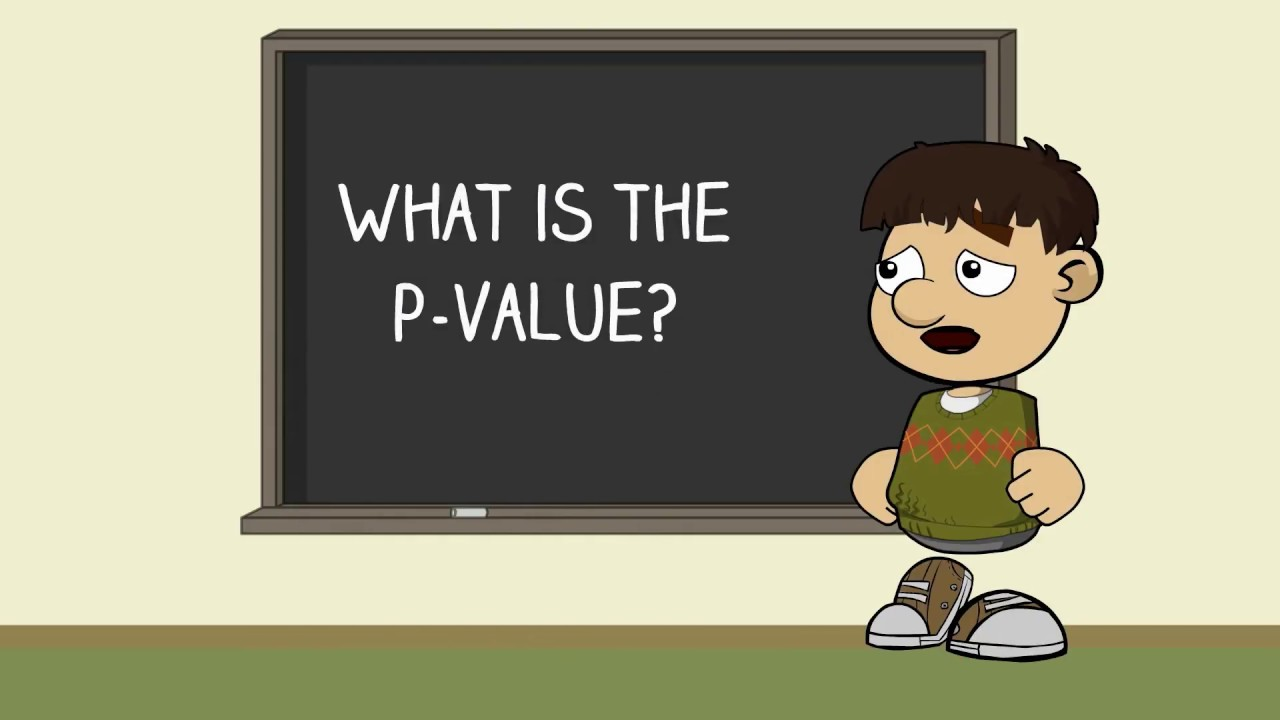 what is p l in business