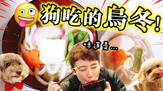 【🐶狗狗吃的烏龍麵!?】是什麼味道😲?觀眾送「大便」給MUFFIN💩..(中字)觀眾禮物開箱#下集