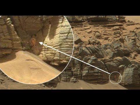 Giant Spider Creature dubbed the Martian Spider Man discovered w/ NASA's Mars Curiosity Rover