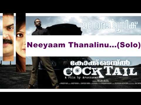 Neeyam Thanalinu (Duet) | Cocktail