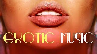 1 HOUR Best Latin Music for Exotic Dinner, Restaurant Music, Bossa Nova Jazz Instrumental Mix