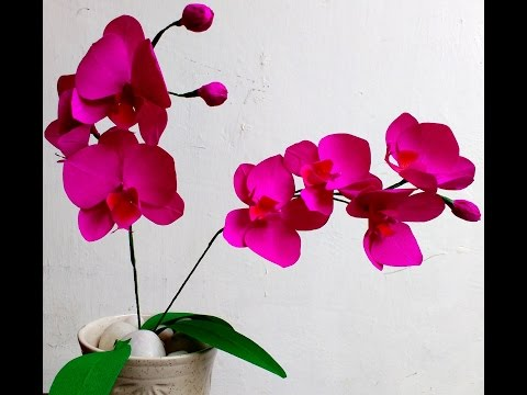 How to make Easy Paper Flowers Orchid Phalaenopsis / Moth Orchid (flower # 91)