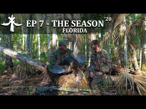 FIRST PUBLIC LAND FLORIDA OSCEOLA TURKEY Episode 7