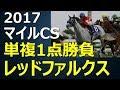 2017マイルCS競馬予想~レッドファルクスを買う根拠~
