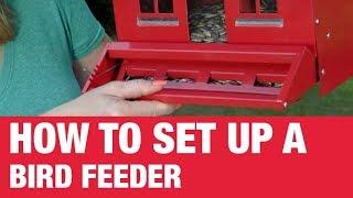 كيفية إعداد تغذية الطيور - Ace Hardware