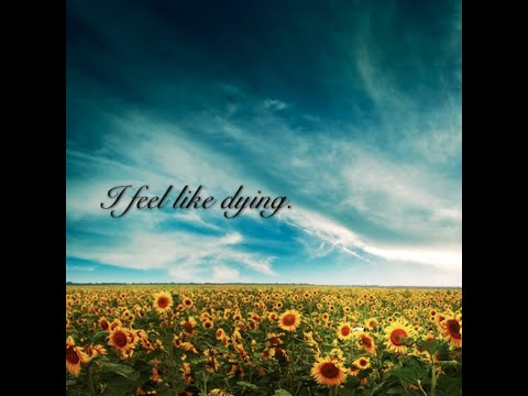 I Feel Like Dying (Lil Wayne Remix) by Cinoevil