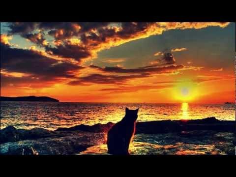 Kenneth Bager feat. Nikolaj Grandjean - Love Won't Leave Me Alone