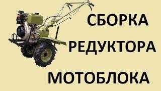 Збірка редуктора мотоблока