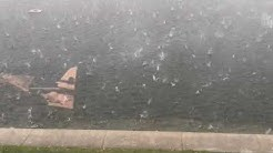 Hail falls in Holly Hill