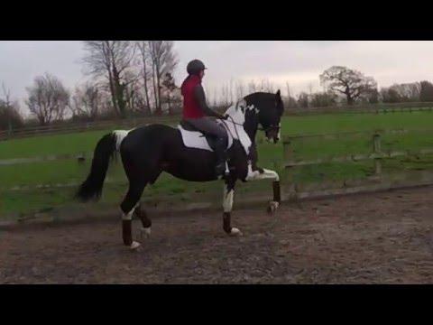 Samara Fly, training with Hannah Doggett