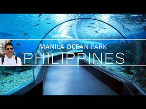 Manila Ocean Park Travel Vlog | Ocean Park Live Show In Manila