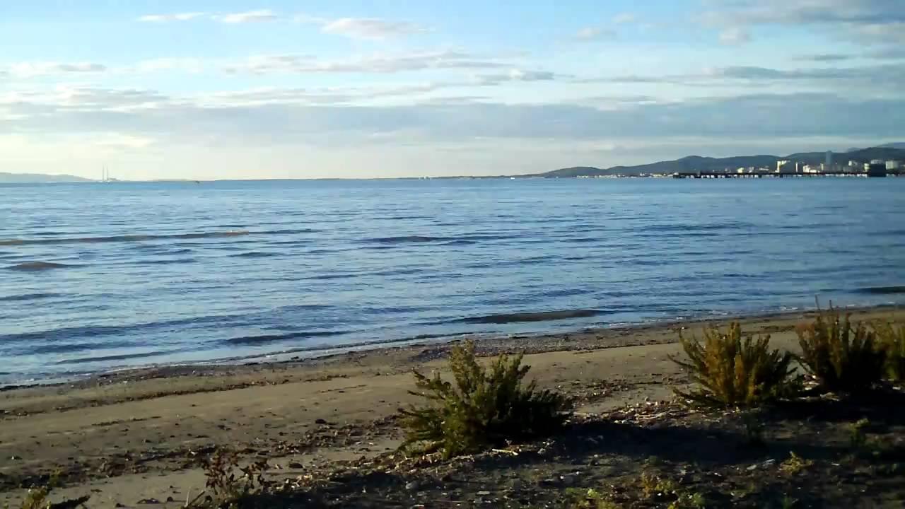 Airon e schizzo in spiaggia al puntone di scarlino youtube for Mondo convenienza scarlino