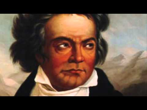 Some of Beethoven's bio