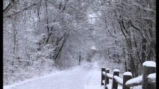 The Christmas Diary Book Trailer
