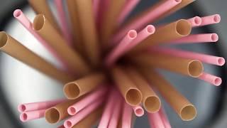 BioBio Straws